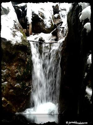 Cascada in Canionul 7 Scari