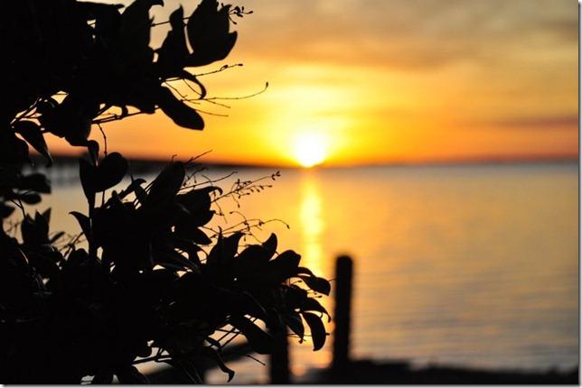 sunset november 19 194