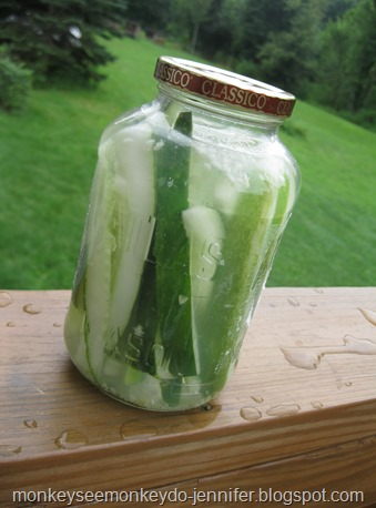 dill pickles (6)