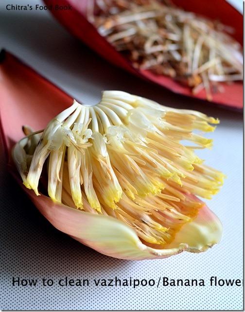 Banana flower-1