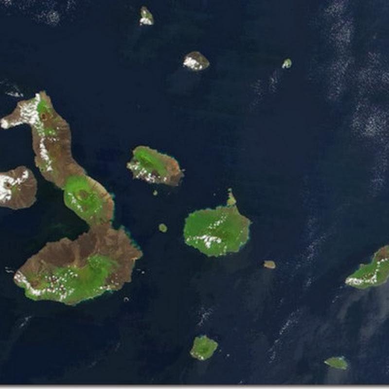 Resumo Charles Darwin e Galápagos