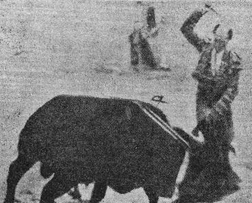 Rafaele el Gallo Ballestilla 001