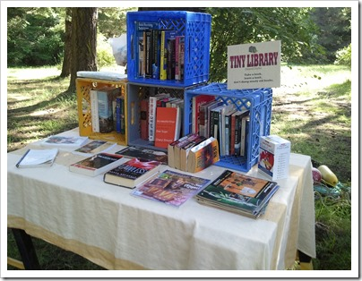 Decatur Island Tiny Library