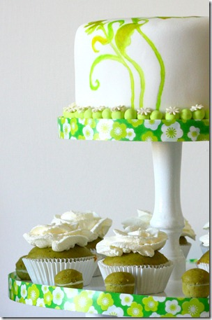 torta dipinta-8