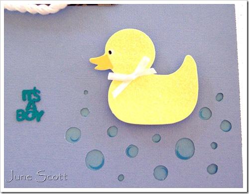 Duck_Water