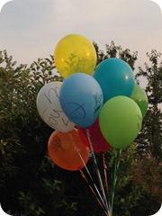 Boise Balloons 2012 (3)