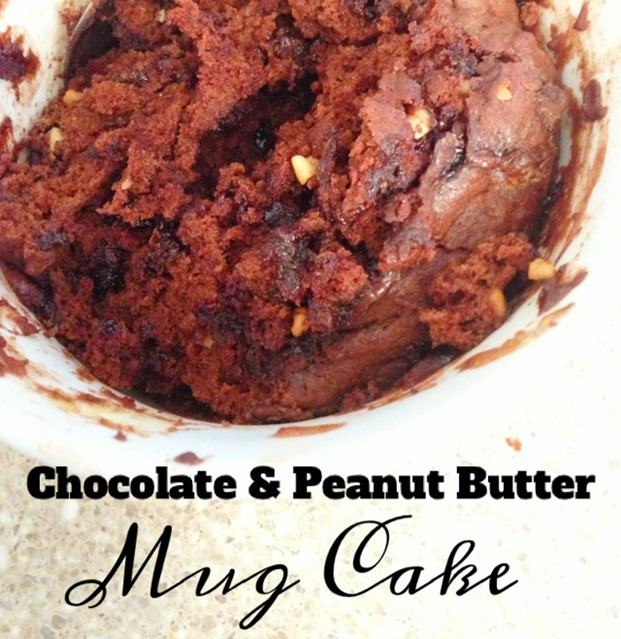 Chocolate & Peanut Butter Mug Cake