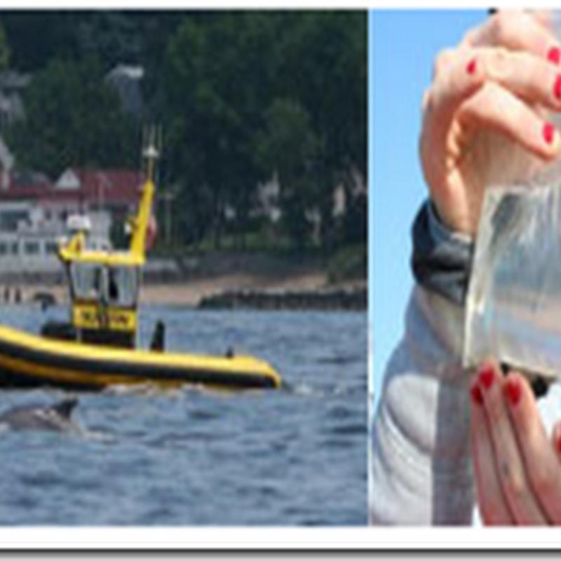 EPA: Nitrogen pollution declining in Long Island Sound