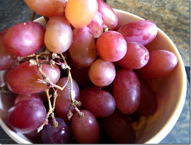 grapes-public-domain-pictures-1 (2283)