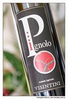 Visintini-Pignolo-2008