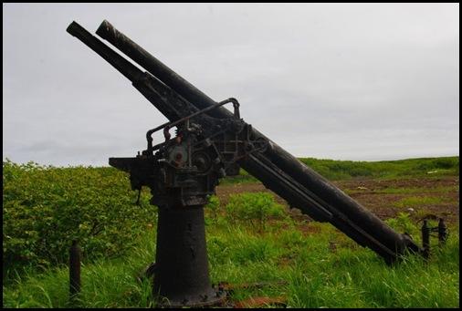 WWII Japanese Gun, Matua