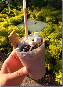Frozen Smores Food and Wine Festival