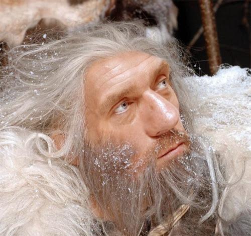 Neanderthal Hugh Laurie