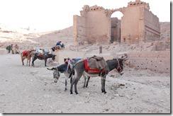 Oporrak 2011 - Jordania ,-  Petra, 21 de Septiembre  448
