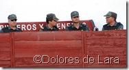©Dolores de Lara (61)