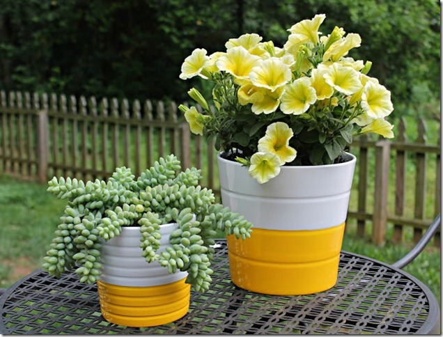 Yellow Pots