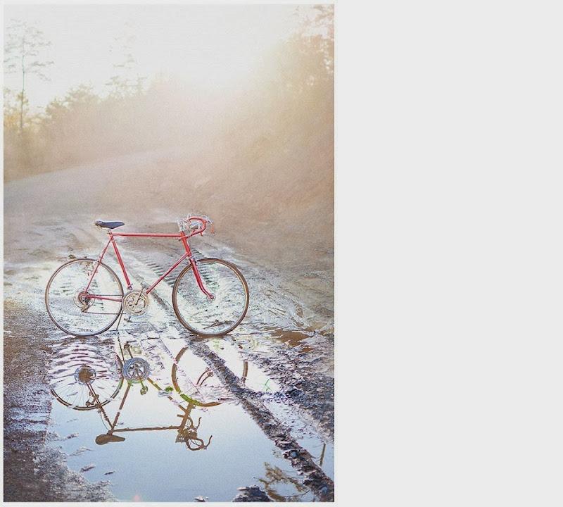 bike a schwinn