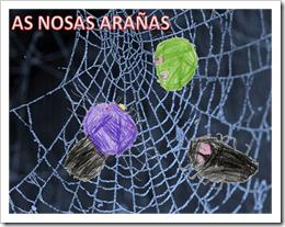 AS NOSAS ARAÑAS 1