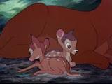 20 enfants de Bambi