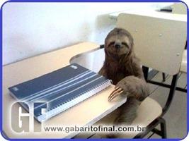 preguiça de estudar