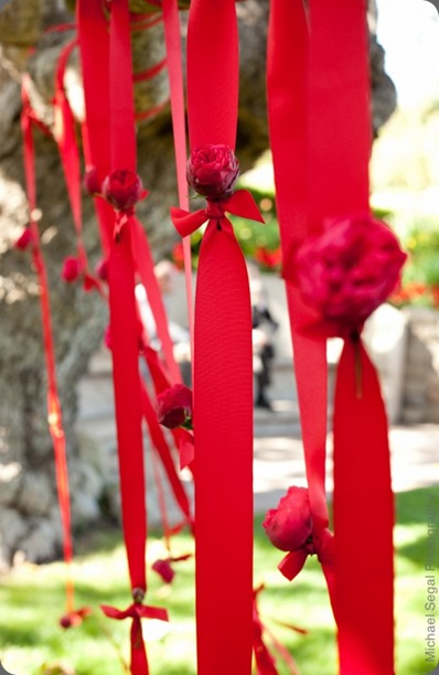hanging flowers tp-17521  krista jon