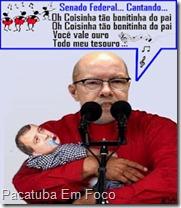 CARLINCACHOERIRA