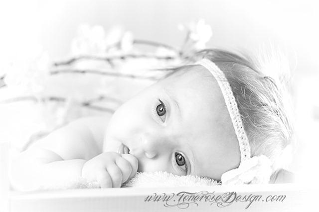 red IMG_5811 barnefotografering grå  komp merka