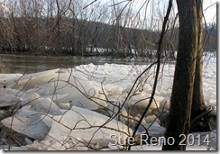 Susquehann River ice jam, by Sue Reno, Image 1