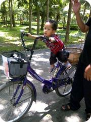 naiksepeda