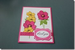 Cards march 2013 019