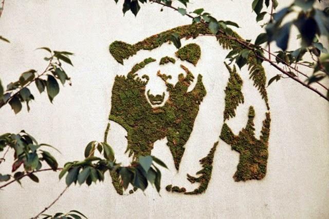 moss-graffiti-7