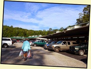 16b - Saturday Farmers Market