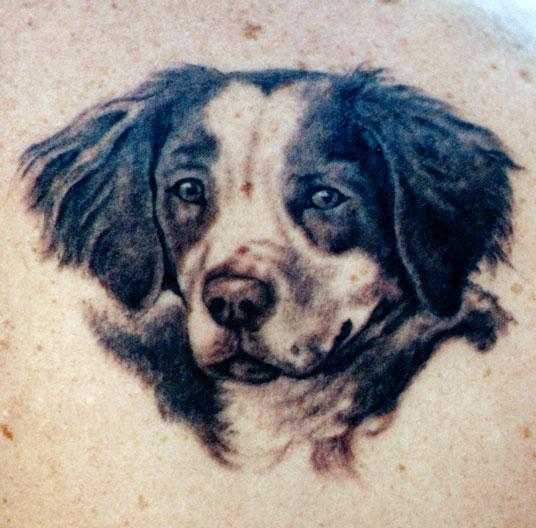 Dog #3