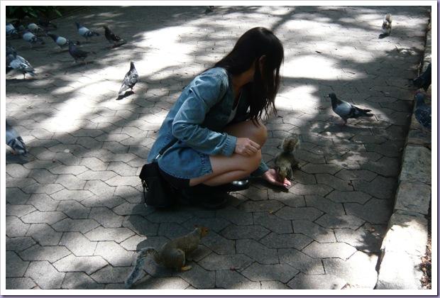 Cape-Town-África-do-Sul-Alimentando-Esquilo-pArque