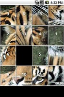 Screenshot of Tiger Puzzles