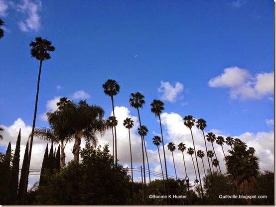 LA_CA2014 037