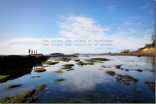 Shoreline of Wonder