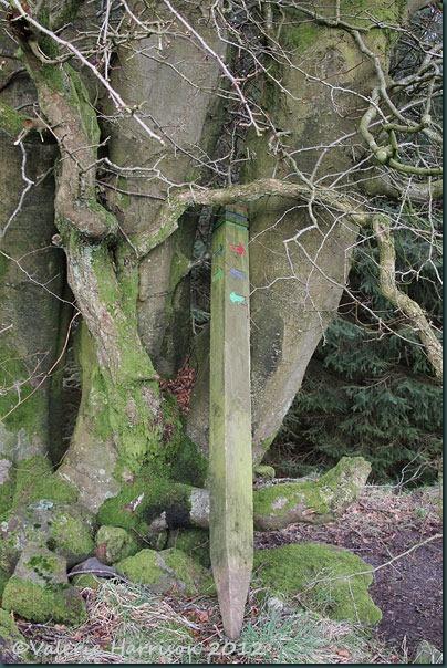 17-signpost
