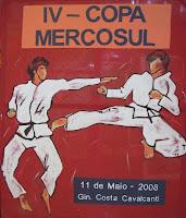 Copa Mercosul 2008 - 002.jpg