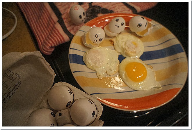 funny-egg-photos (2)