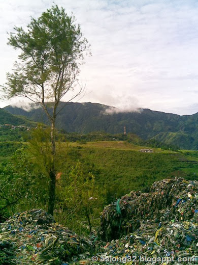 09012011(105)asiong32