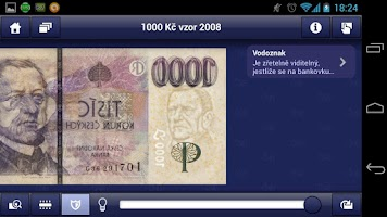 Screenshot of Czech money