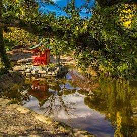 Peaceful Place by Judi Kubes - City,  Street & Park  City Parks ( pagoda, park, trees, tacoma, japanese, pond, spring, garden, shrubs, asian,  )