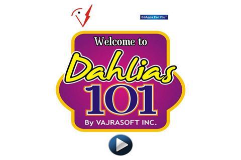 Dahlias 101