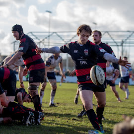 Box it  by Dan Bellenger - News & Events Sports ( sports, moseley, sport photography, rugby )