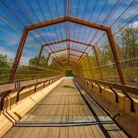 Spindly by Mark Goodman - Buildings & Architecture Bridges & Suspended Structures ( wisconsin, spring green, pedestrian bridge, markgoodmanphoto, high dynamic range, architecture photography )