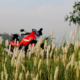 The Red Ride by Santanu Banerjee - Transportation Motorcycles ( trips, red bike, motorcycle, two wheelers, flowers )