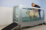 East Yorkshire Hydrotherapy Centre Are Located Next To The Kennels
