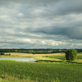 After the Storm by Shari Brase-Smith - Landscapes Prairies, Meadows & Fields ( storm clouids, sky, landscape, pond, prairie, fields )
