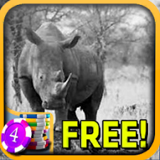 Magnificent Rhinoceros Slots